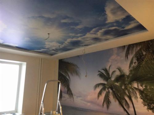 Двухуровневый натяжной потолок с Арт-Печатью